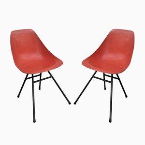 Ladybird Stühle von René Jean Caillette für Steiner, 1960er, 2er Set