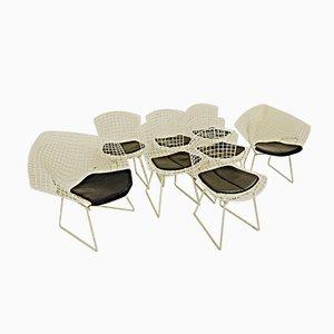 Beistellstühle aus Metall von Bertoia Diamond, 1970er, 8er Set