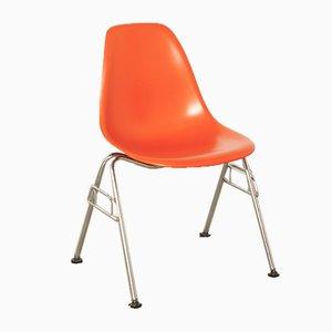 Sedia in plastica DSS di Charles & Ray Eames per Vitra, 2006