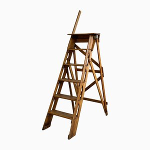 Vintage Library Step Ladder