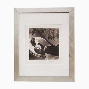 Vintage Gabrielle Coco Chanel Druck von Horst P Horst, 1937