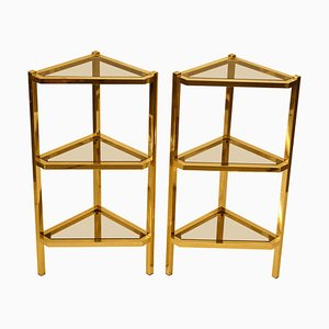 Triangular Modernist Brass and Glass Shelves, 1970s, Set of 2
