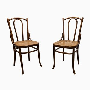 Mid-Century Beech Dining Chairs from Fischel, Set of 2