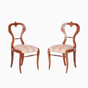 Antike Biedermeier Esszimmerstühle aus Nussholz, 2er Set