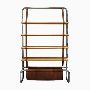 Italian Birch Jumbo line Bookcase by Luigi Massoni for Poltrona Frau, 1970s