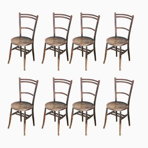Spanish Beechwood Bistro Chairs, 1940s, Set of 8