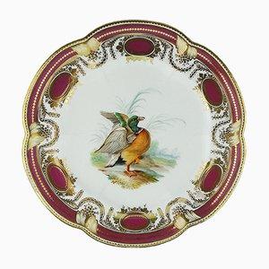 Assiette Antique en Porcelaine par John Rose pour Colebrokedale, Angleterre