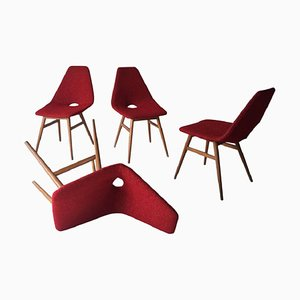 Mid-Century Hungarian Chairs by Judit Burian & Erika Szek, 1950s, Set of 4