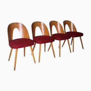 Mid-Century Dining Room Chairs by Antonín Šuman for Tatra, 1960s, Set of 4