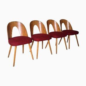 Mid-Century Esszimmerstühle von Antonín Šuman für Tatra, 1960er, 4er Set