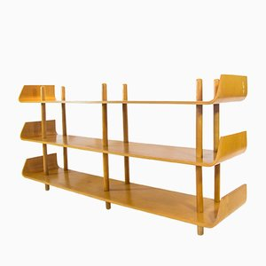 Dutch Bookcase by Willem Lutjens for Gouda den Boer, 1950s