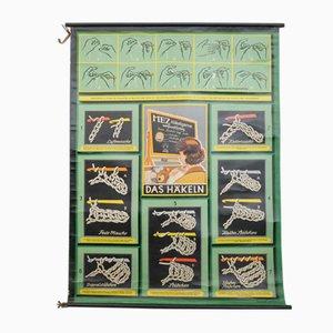 Poster scolastico vintage di MEZ, anni '50
