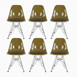 Model Eiffel Tower Mustard Fiberglass Chairs by Charles & Ray Eames for Herman Miller, 1970s, Set of 6
