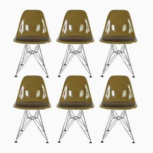 Senfgelbe Modell Eiffelturm Stühle aus Glasfaser von Charles & Ray Eames für Herman Miller, 1970er, 6er Set