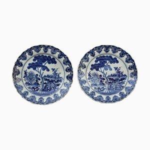 Platos Delftware antiguos de De Porceleyne Lampetkan. Juego de 2