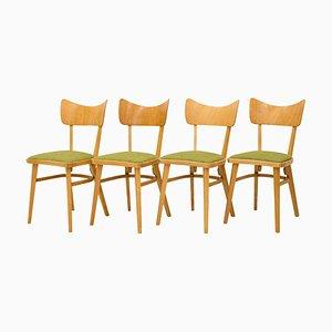Tschechoslowakische Stühle, 1960er, 4er Set