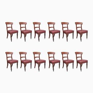 Chaises de Salle à Manger Antiques en Acajou, Set de 12