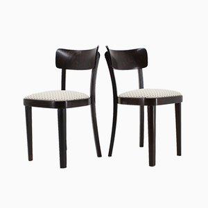 Esszimmerstühle von Thonet, 1950er, 4er Set