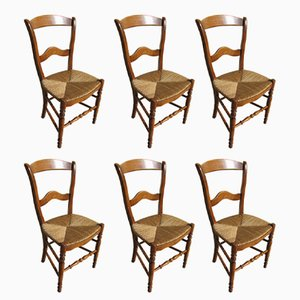 Beech Chairs, 1980s, Set of 6