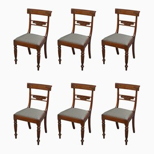 Antique William IV Mahogany Dining Chairs, Set of 6