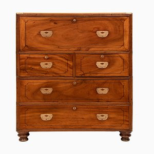 Antique Camphorwood Military Campaign Chest of Drawers, 1850s
