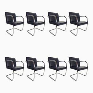 Brno Stühle mit Gestell aus Stahlrohr & schwarzem Ledersitz von Ludwig Mies van der Rohe für Knoll, 1980, 8er Set