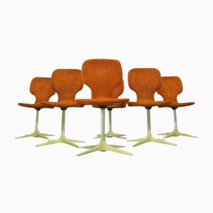 Mid-Century Tulip Chairs from Mann Mobel, 1960s, Set of 6