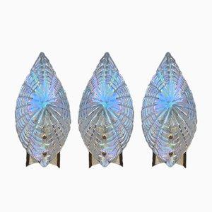 Aplique en forma de concha de latón chapado en oro y cristal de Murano iridiscente, años 70