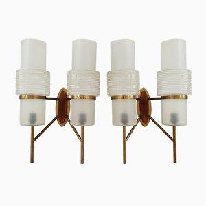 Lámparas de pared francesas Mid-Century de latón, resina y vidrio, años 50. Juego de 2