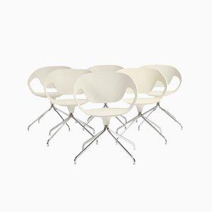 Stühle von Luca Nichetto für Casamania, 2000er, 6er Set