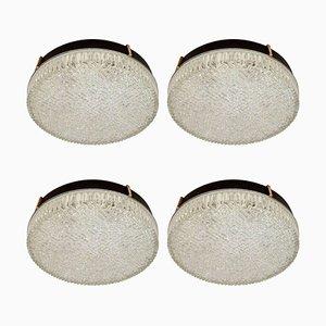 Lámparas de techo o pared Mid-Century de vidrio de N. Leuchten, años 60. Juego de 4