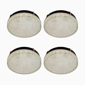 Mid-Century Flush Mount Glass Ceiling or Wall Lights from N. Leuchten, 1960s, Set of 4