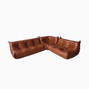 Whiskeybraune Vintage Sitzelemente aus Leder von Michel Ducaroy für Ligne Roset, 1970er, 3er Set