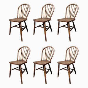 Vintage Solid Wooden Dining Chairs by Lucian Ercolani for Ercol, 1950s, Set of 6