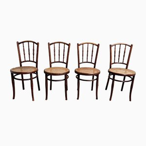 Vintage Bentwood Chairs from Jacob & Josef Kohn, 1920s, Set of 4