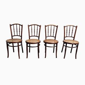 Vintage Stühle aus Bugholz von Jacob & Josef Kohn, 1920er, 4er Set