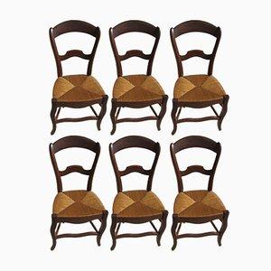 Vintage Louis Philippe Esszimmerstühle mit Sitz aus Stroh, 1900er, 6er Set
