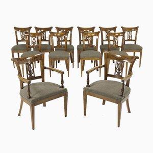 Chaises de Salle à Manger Antiques en Merisier, Set de 12