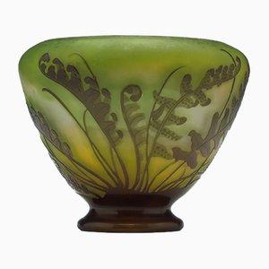 Antike französische Cameo Fougeres Vase von Galle