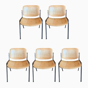 Italian Modern DSC 106 Dining Chairs by Giancarlo Piretti for Castelli / Anonima Castelli, 1970s, Set of 5