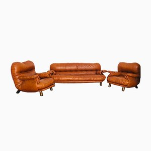 Vintage Leather Sofas by E. Cobianchi for Insa, 1970s, Set of 3