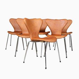 Sedia da pranzo Syveren 3107 in pelle anilina e acciaio tubolare di Arne Jacobsen per Fritz Hansen, Danimarca, anni '60