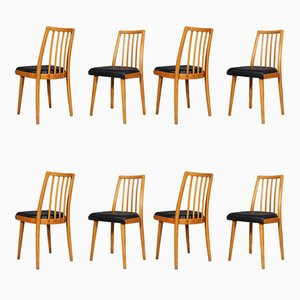 Dining Chairs from TON, 1940s, Set of 8