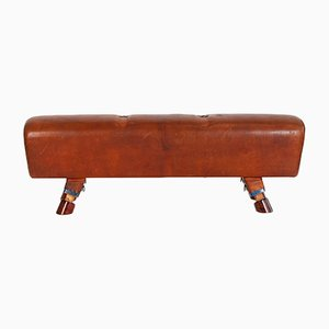 Vintage Industrial Cast Iron and Leather Gymnastics Pommel Horse, 1930s