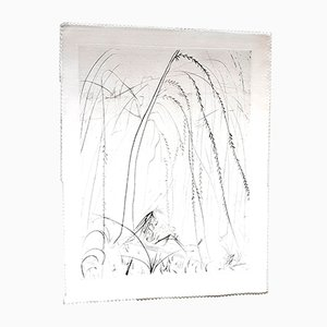 Acquaforte su seta Weeping willow di Salvador Dali, 1968