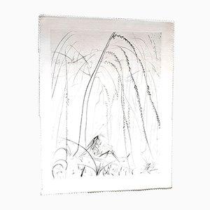 Weeping Willow Radierung auf Seide von Salvador Dali, 1968
