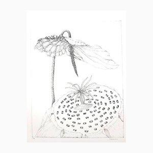 Herbarium Lithograph by Gochka Charewicz, 1980s
