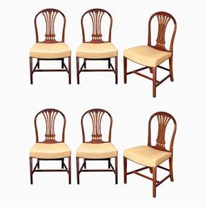 Chaises de Salle à Manger Antiques en Acajou, Set de 6