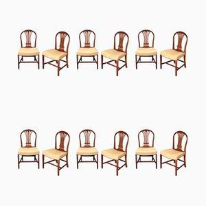 Sedie da pranzo antiche in mogano, set di 12