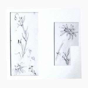 Blumen Skizzen Zeichnungen von Léonard Tsugouharu Foujita, 1957, 2er Set